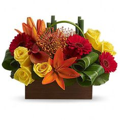Arreglo-floral-Sol-del-trópico-std.jpg (900×900)
