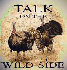 Just a couple more weeks!!!����My blood is on fire! #turkeyhunting #turkeyseason #spring #springgobbler #tomturkey #longbeards #turkey #quotes #humorquotes #wilderness #wildlife #hunting #lovehunting #girlswhohunt #huntinglife #springseason #adventure #ex