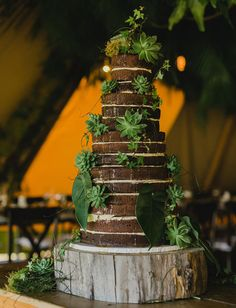 A cake with intense greenery accents.