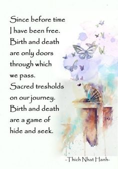 Detachment Quotes, Shine Quotes, Buddha Wisdom, Birth And Death, Thich Nhat Hanh, One Word Quotes, Buddhist Philosophy, Buddhist Quotes, True Nature