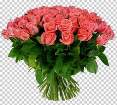 This PNG image was uploaded on May pm by user: SquirtyVaghole and is about Annual Plant, Artificial Flower, Cartoon, Color, Cut Flowers. Flower Bouquet Png, Png Images For Editing, Banner Background Hd, Annual Plants, Flower Delivery, Galaxy Wallpaper, Cut Flowers, Color Trends, Artificial Flowers