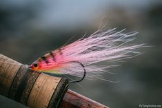 Pink Bucktail Deceiver I've been fishing for sea trout quite a lot this fall and the common choice here is different kinds of streamers for them. This sort a miniature version of one of my pikeflies has been on the end of my line quite a lot in. Fly Fishing Gear, Fishing Life, Sea Fishing, Trout Fishing, Saltwater Flies, Saltwater Fishing, Crappie Jigs, Pike Flies, Steelhead Flies