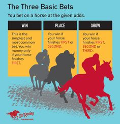 HORSE RACING 101 - The Three Basic Bets #horseracing