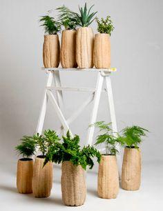 Loofah exfoliatLing sponges as pot planters-Loofah Leaves the Shower for Innovative Houseware Series Indoor Garden, Indoor Plants, Outdoor Gardens, Loofah Sponge, Mexican Designs, Gourd Art, Sustainable Design, Gourds, Plant Hanger