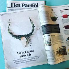 Een hele pagina met het 'Het Groene Gewei' in het Parool💪🦌 www.geweldiggewei.nl link in bio #gewei #parool