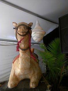The camel at Folklorica