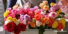 Rose Arrangements, Table Decorations, Flowers, Plants, Happy, Home Decor, Decoration Home, Ser Feliz, Planters