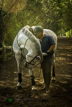 White Horse I photographed in Wellington, Florida at the Equestrian Club. He bowed! So beautiful and talented.