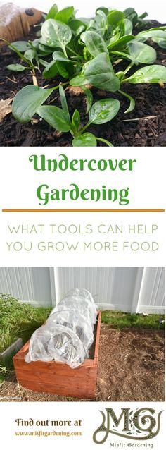 Want to grow more food in your #garden_ Click to find out about season extension tools or pin it for later