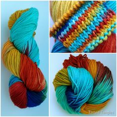 Scarlet Macaw by TintedTangles.com