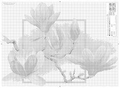 markisa81.gallery.ru watch?ph=Oeh-f1YT9&subpanel=zoom&zoom=8