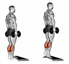 Illustration about Rise on toes standing on platform. Exercising for bodybuilding Target muscles are marked in red. Initial and final steps. Illustration of fitness, rise, glutes - 59614421 Fitness Workouts, Gym Workout Tips, Dumbbell Workout, At Home Workouts, Fitness Tips, Fitness Motivation, Fitness Outfits, Fitness Planner, Fitness Quotes