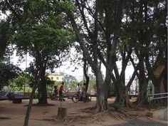 Infraestrutura: O Parque é equipado com área de churrasqueiras, playground, equipamentos para prática de exercícios, bosque, horta e telecentro. Funcionamento: De segunda à sexta-feira, das 8h às 17h, e aos sábados, das 8h às 16h. Tel.: (11) 2214-7481