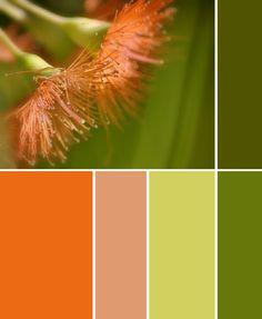 Color Scheme ~ Oranges and Greens