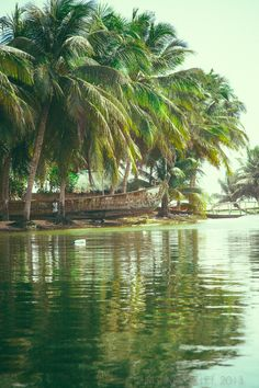 Figgy in the World Ada, Ghana                                                                                                                                                                                 More