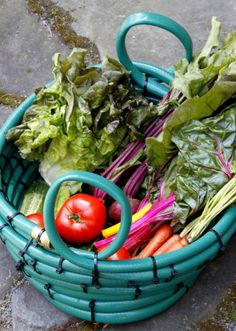 Learn how to craft a garden hose into a weatherproof basket for the garden.