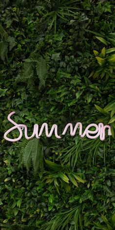 Summer #wallpaper #iphone #android #background #followme Apple Wallpaper Iphone, Bird Wallpaper, Summer Wallpaper, Islamic Wallpaper, Travel Wallpaper, Kawaii Wallpaper, Nature Wallpaper, Cellphone Wallpaper, Wallpaper Backgrounds