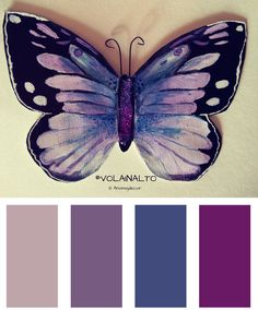Butterfly colors Palette! #butterfly #purple #violet #blue #colors @home