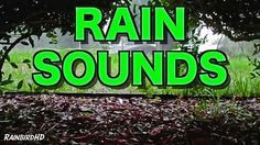 Relax to the sound of Rain and Thunder from a Thunderstorm in Florida. No music added. Available in HD. Rain and Thunder Thunderstorm Nature R. Healing Meditation, Meditation Music, Relaxation Meditation, Rain And Thunder Sounds, Rain Sounds, Stress Relief Music, Sound Of Rain, Spiritual Healer, Nature Sounds