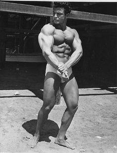 Lou Degni