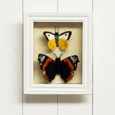 Felt Butterfly Display Box, I could do this!