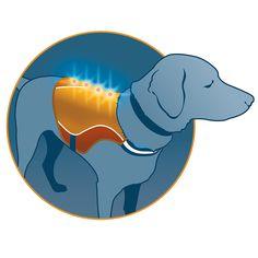 Kurgo Dog Products - Reflect and Protect Active Dog Vest, $14.00 (http://www.kurgo.com/dog-jackets/reflect-and-protect-active-dog-vest/)