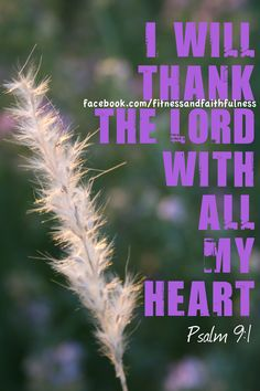 I will thank the Lord with all my heart.