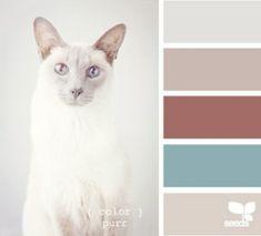 Color Pallet