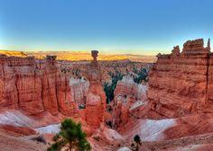 Bryce Canyon / Nikon Knight
