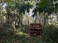 Piano In The Woods. i would love to play a piano in the woods!!!!! can u image how it would sound outside??!!!!