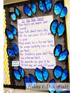 Blue Morpho Butterfly (from A Day in First Grade)