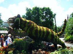 Jungala, Busch Gardens, Tampa, Florida.
