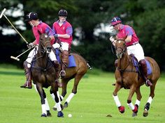 polo how to spend a better sunday?