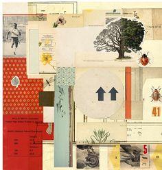 tree4 by woefoep, via Flickr