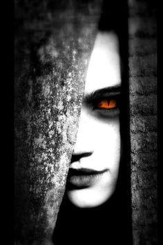 """""""She brought the Night hidden in her sad Wolf eyes - The perfume of a twilight, her strongest scent. Half Wolf, Half female - what a strange wedding, Mother Nature that offered us to see . . . """" Moonspell - Wolfshade"""