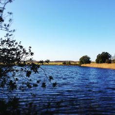A day out at Holkham, Norfolk