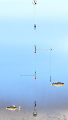 Fishing Tandem Pickeral Rig