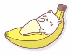Bananya Bananacat on Twitter
