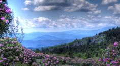 Appalachian Mountains | Hiking The Appalachian Trail Over Roan High Knob | Living in The Blue ...