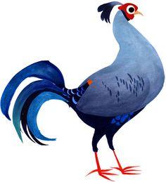 Aves de Corral Gallo Vintage Brendan Wenzel
