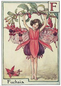 Fuschia Flower Fairy
