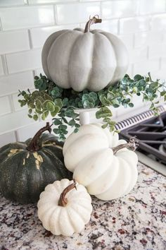Fall Decor Ideas – From the family room to the farm table centerpiece, I'm sharing simple ideas for DIY fall decorating that will add a rustic touch to your modern house. Take a look at 14 family room fall decor… Continue Reading → Thanksgiving Decorations, Seasonal Decor, Holiday Decor, Thanksgiving Tablescapes, Pumpkin Decorating, Decorating Your Home, Decorating Ideas, Decorating Websites, Interior Decorating