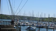 Discover the Haven Coast, the Wild Atlantic Way's safe harbour in Cork. Safe Harbor, Ireland, Coast, Day, Irish