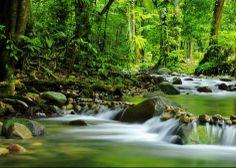 Daintree Yoga Retreat in tropical, far north Queensland #rainforest #eco #barrierreef