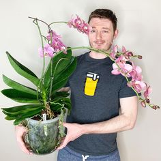 Watering Orchids with Tap Water: a lesson on pH, Hardness, and Nutrient Availability » Here—But Not Orchid Plant Care, Orchid Plants, Orchid Repotting, Orchid Roots, Orchid Leaves, Orchids In Water, Orchids Garden, Orchid Fertilizer, Orchid Flower Arrangements