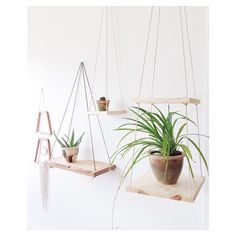 - Double tier hanging shelf (far right) $48 SOLD  Single hanging shelf (middle top) $32