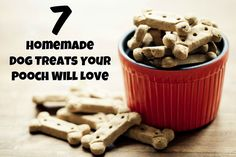 7 Homemade Dog Treats Your Pooch Will Love
