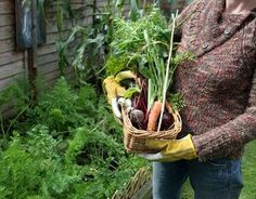 We love these easy tips and ideas on how to grow your own delicious, healthful organic food.  Learn how to start your own organic garden in these 9 easy steps.
