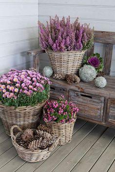 80 Home Garden Ideas 7