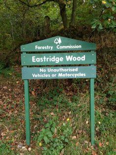 Fat bike ride at Eastridge #fatbike #bicycle